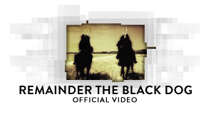 Remainder the Black Dog