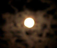 Blue moon full moon 2. 8.31.12