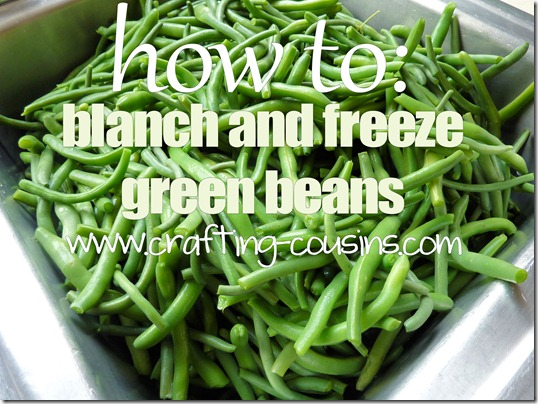 Crafty Cousins' tips on how to blanch and freeze fresh green beans