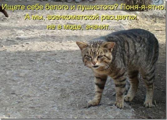 ec40cba74dba239ac74b8103836_prev
