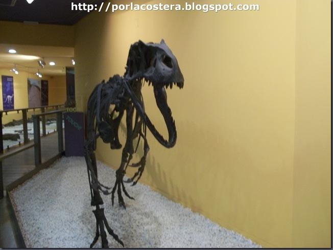 reconstruccion fosiles