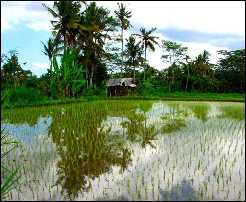 Bangli, Bali