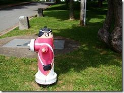 2012-06-25 DSC04925 Liverpool fire hydrant