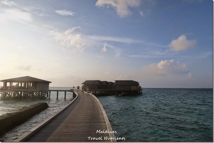 馬爾地夫 Centara渡假村 (25)