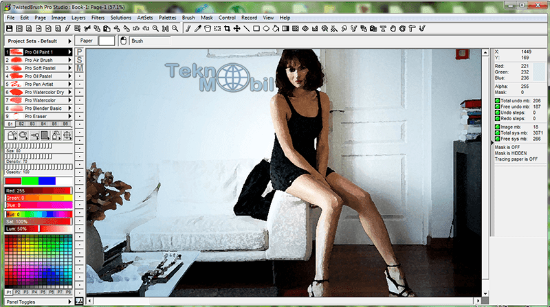 TwistedBrush Pro Studio Full