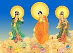 Slideshow-Lord Amitābha Buddha,three-Saint Pictures         slideshow