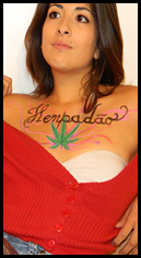 Bianaca miss marijuana 2012 hempadao