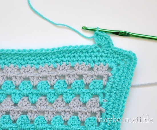 first shell of scalloped border