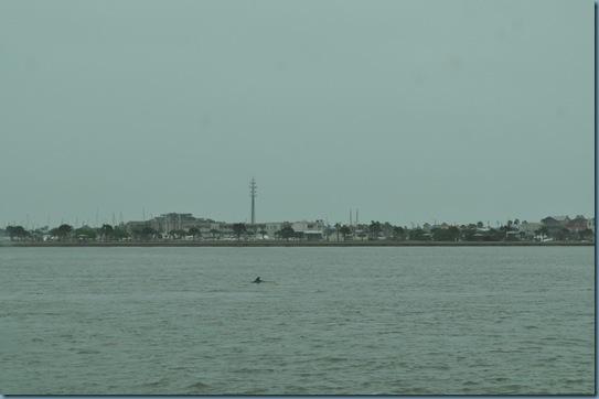 04-17-13 Port Aransas 10