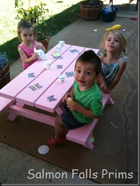 childs picnic table-2