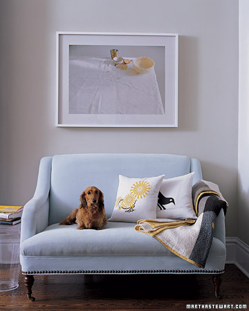 Dude, kicks back on this stylish settee. (Martha Stewart Living)