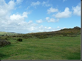 dartmoor 018