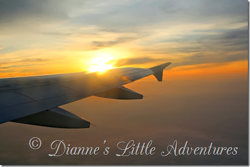 Dianne's Little Adventures