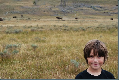 Yellowstone 036
