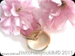 339624-anillos-de-boda-y-flor-de-cerezo-de-doble