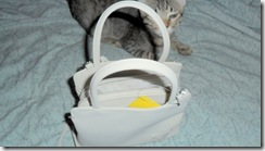 Pebbles--showing--how-small-purse-is