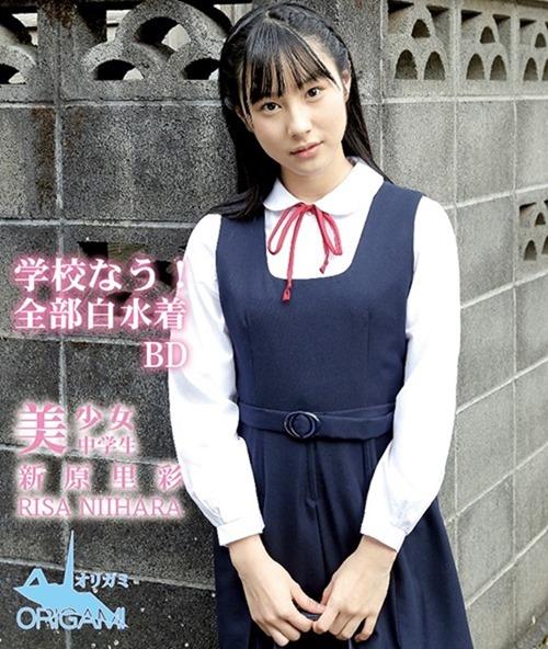 Niihara-Risa