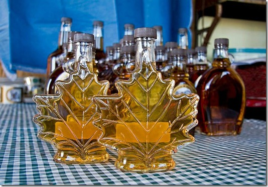 Tree_maple-syrup-bottles