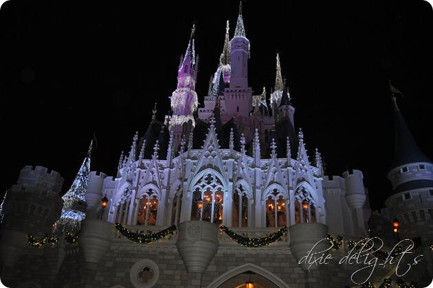Disney December 2012 489