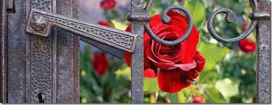 rosegardengate