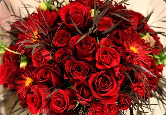 ikko%2Bgreen%2Broom%2Bflowers%2B%2528Large%2529 tamara rigney