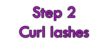 curl lash