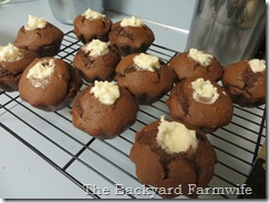 chocolate coconut cupcakes - The Backyard Farmwife