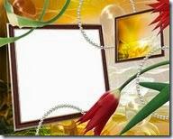 PNG frame (20)