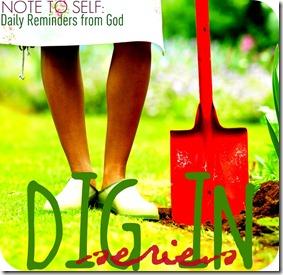 dig in series2