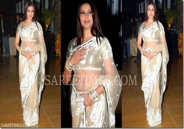 Bipasha_Basu_Shimmer_Saree