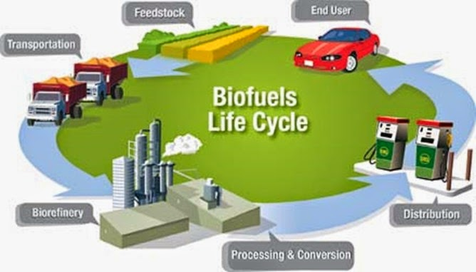 understanding how biofuels are produced and used