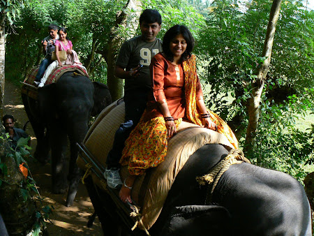 Things to do in Kerala: Elephant ride