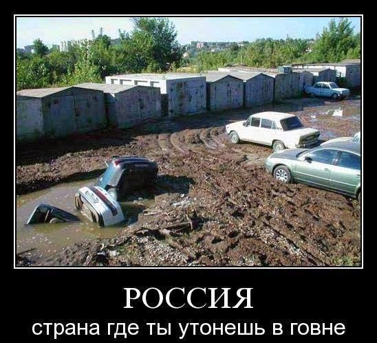 Пограничники приняли бой и отбили нападение террористов на Донетчине - Цензор.НЕТ 7191
