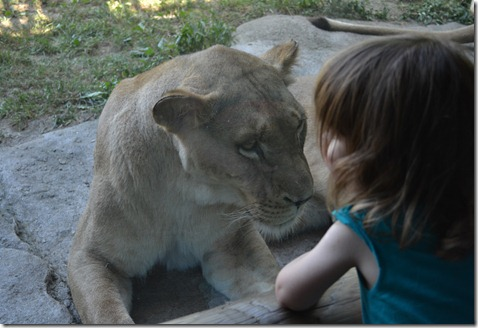 July 21 2011 Zoo KC 115