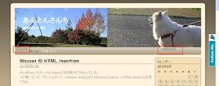 20130313weaver_siteopt02.jpg