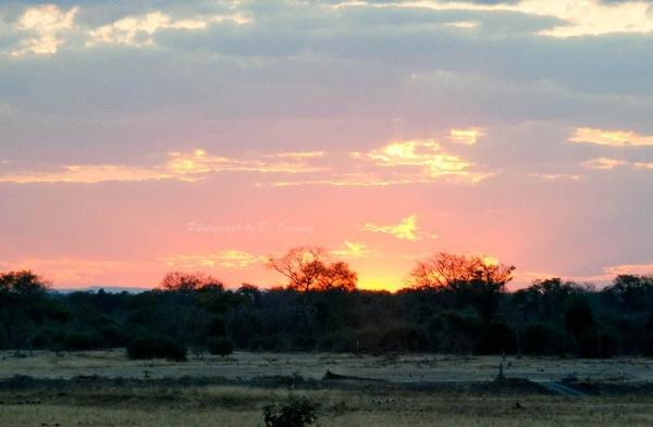 Zambia Africa  19