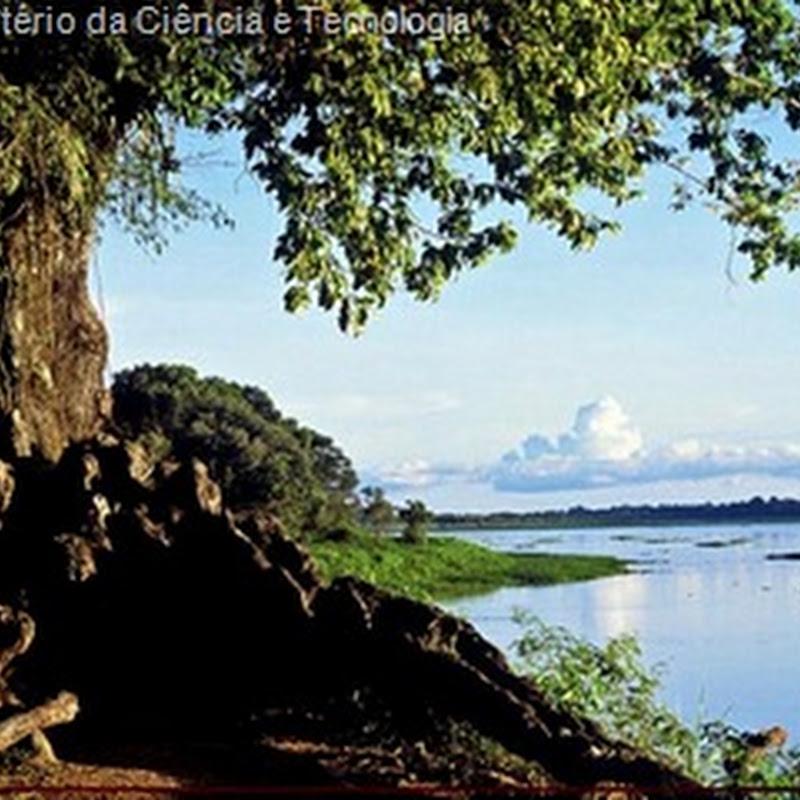 Desmatamento da Amazônia afeta chuvas em países distantes da floresta, diz estudo