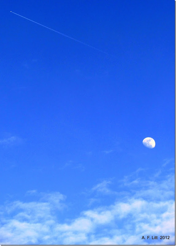 Moon & Plane.  Portland, Oregon.  April 2, 2012.  Photo of the Day by A. F. Litt:  September 10, 2012.