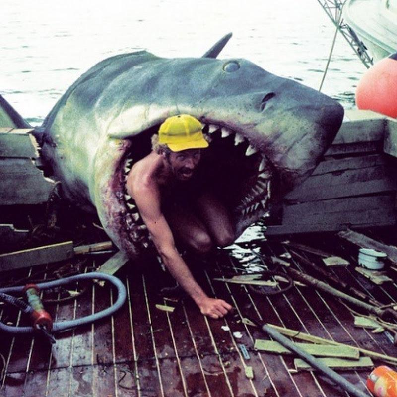 Nos bastidores do filme Tubarão ( 1975 )