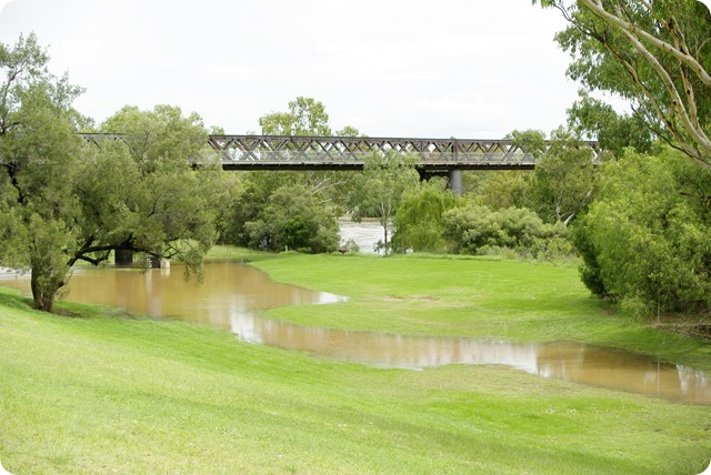 Gwydir River Bridge at Bingara, the water level has dropped quickly