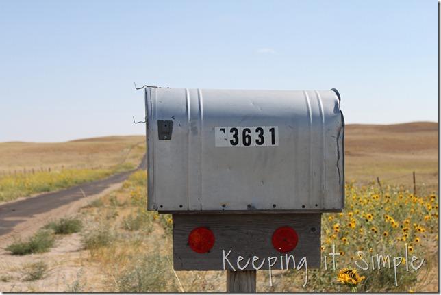 mailbox vinyl (2)