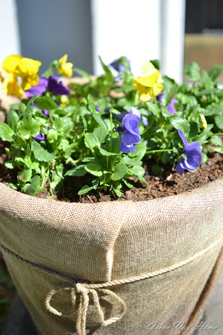spring planters 009