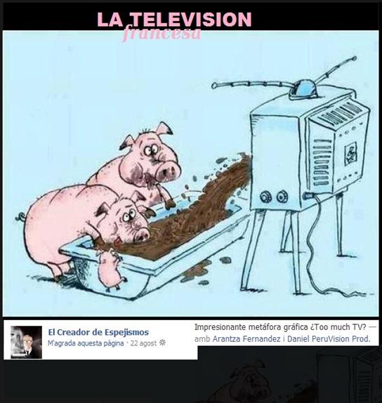 televiosion francesa