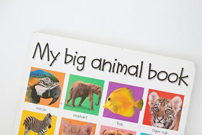 favorite toddler books big animal book