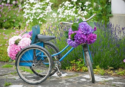 bicycle philippa craddock flowers 1006004_555066154551291_1849751663_n