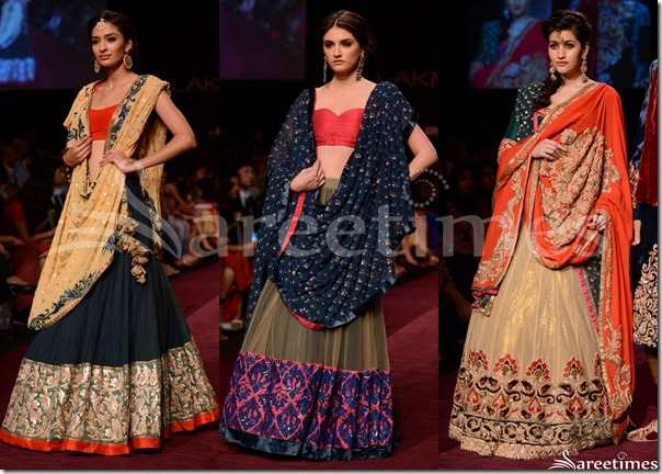Shyamal_Bhumika_Collection_2013(2)
