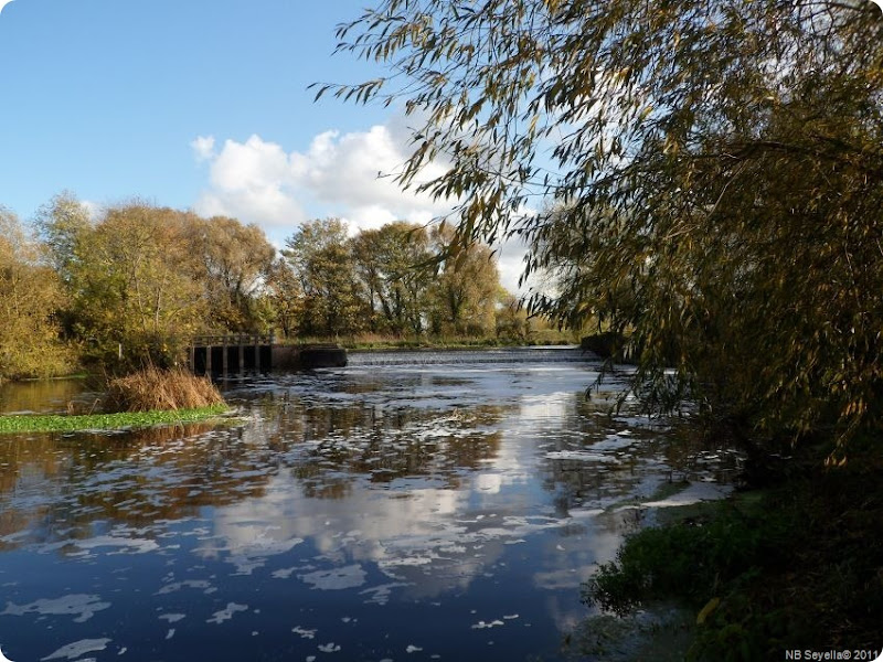 Z..SAM_0046 Cossington Weir