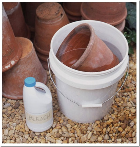disinfect clay pots