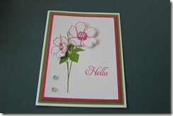 Cards march 2013 003