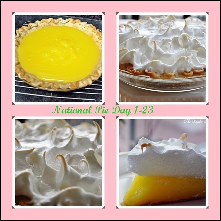 National Pie Day 1-23-11